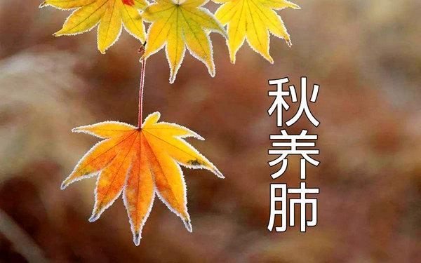 秋季养生 要注意预防呼吸疾病.jpg